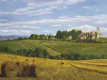 Campo in Toscana