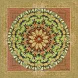 Floress Mandala IV