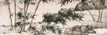 Bamboo under Spring Rain