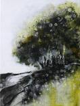 Dense Forest Edge 1620