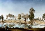 Oliver Plantation