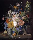 Poppies, Hollyhock, Morning Glory, Viola, Daisies