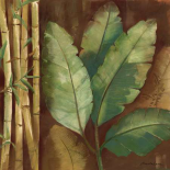 Bamboo and Palms I