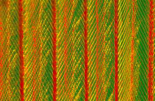 Close up of feather showing interlocking barbules