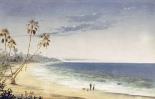 Cuban Landscape